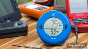 The 5 Best BBQ Smoker Thermometers of 2018