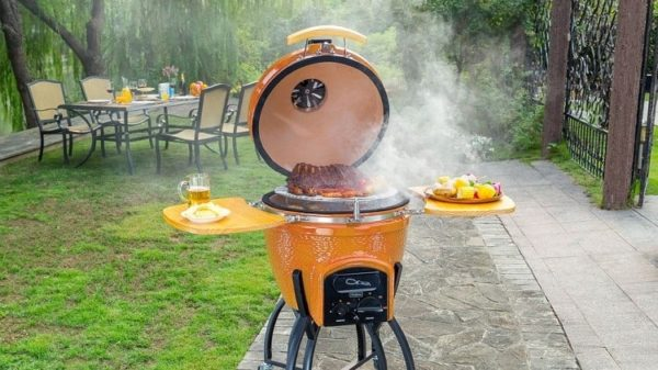 The Best Kamado Grills Reviews for 2019