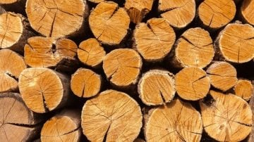 Best Types of Wood For Smoking Your Meat
