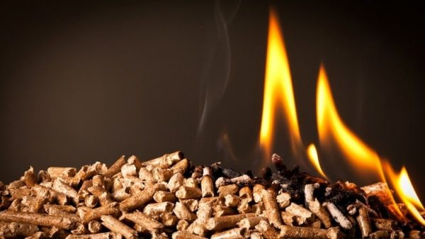 Best Wood Pellets for Smoking & Grilling