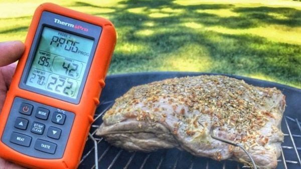 ThermoPro Meat Thermometer Reviews and Comparisons