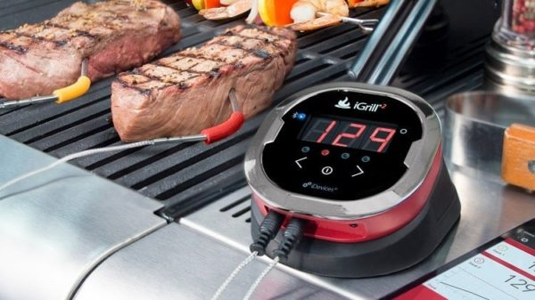 Types of BBQ Meat Thermometers